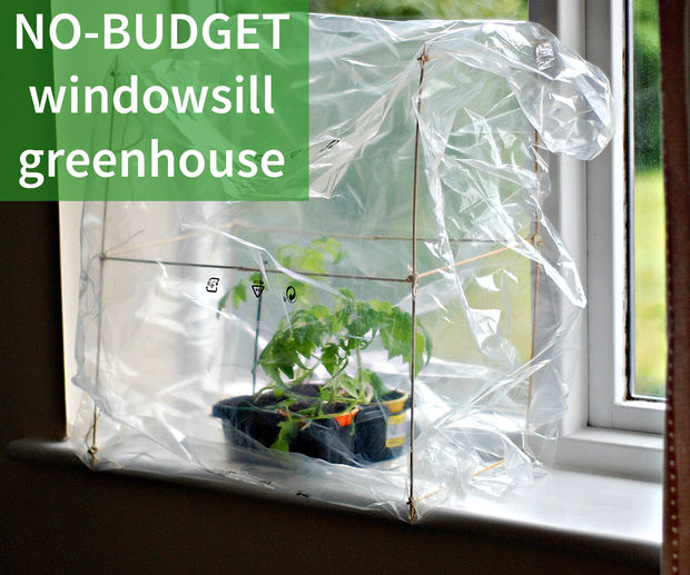 make your own super cheap windowsill greenhouse the diy life