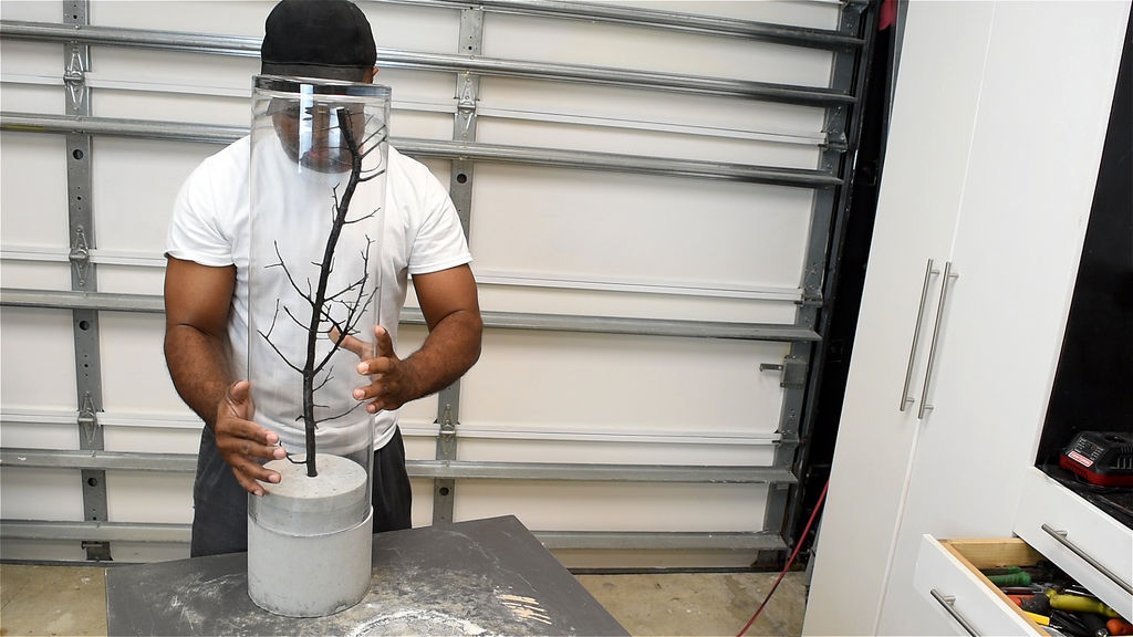 insert the tree branch and ensure that the glass vase fits over the branch