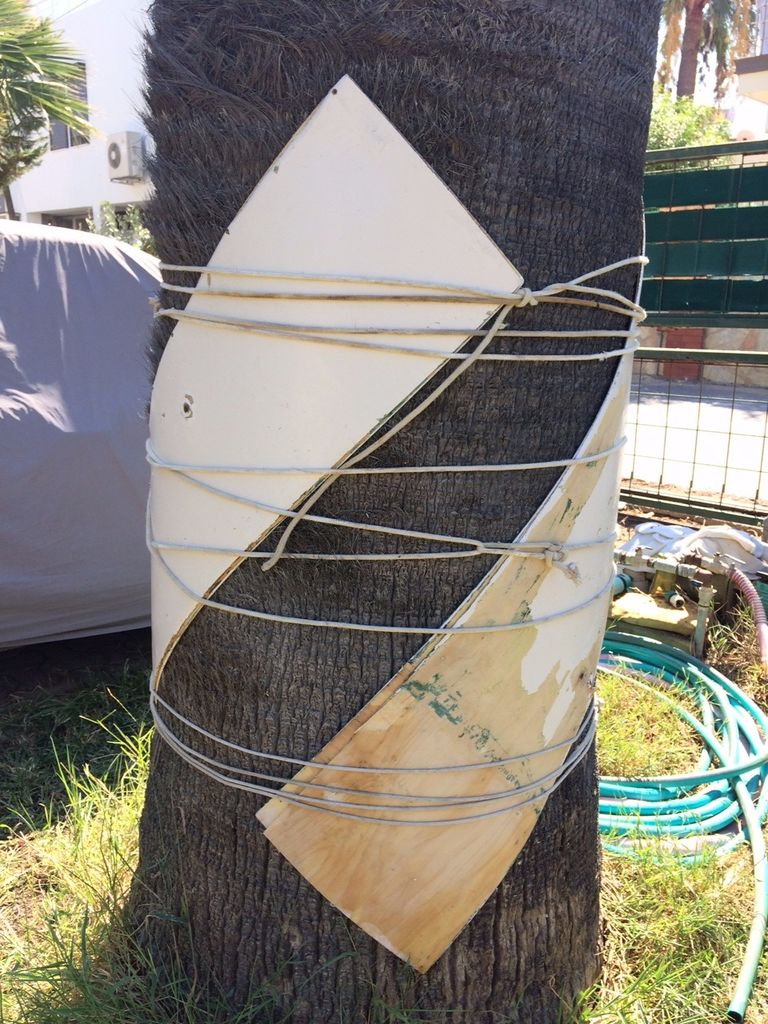 tie the plywood around a tree trunk