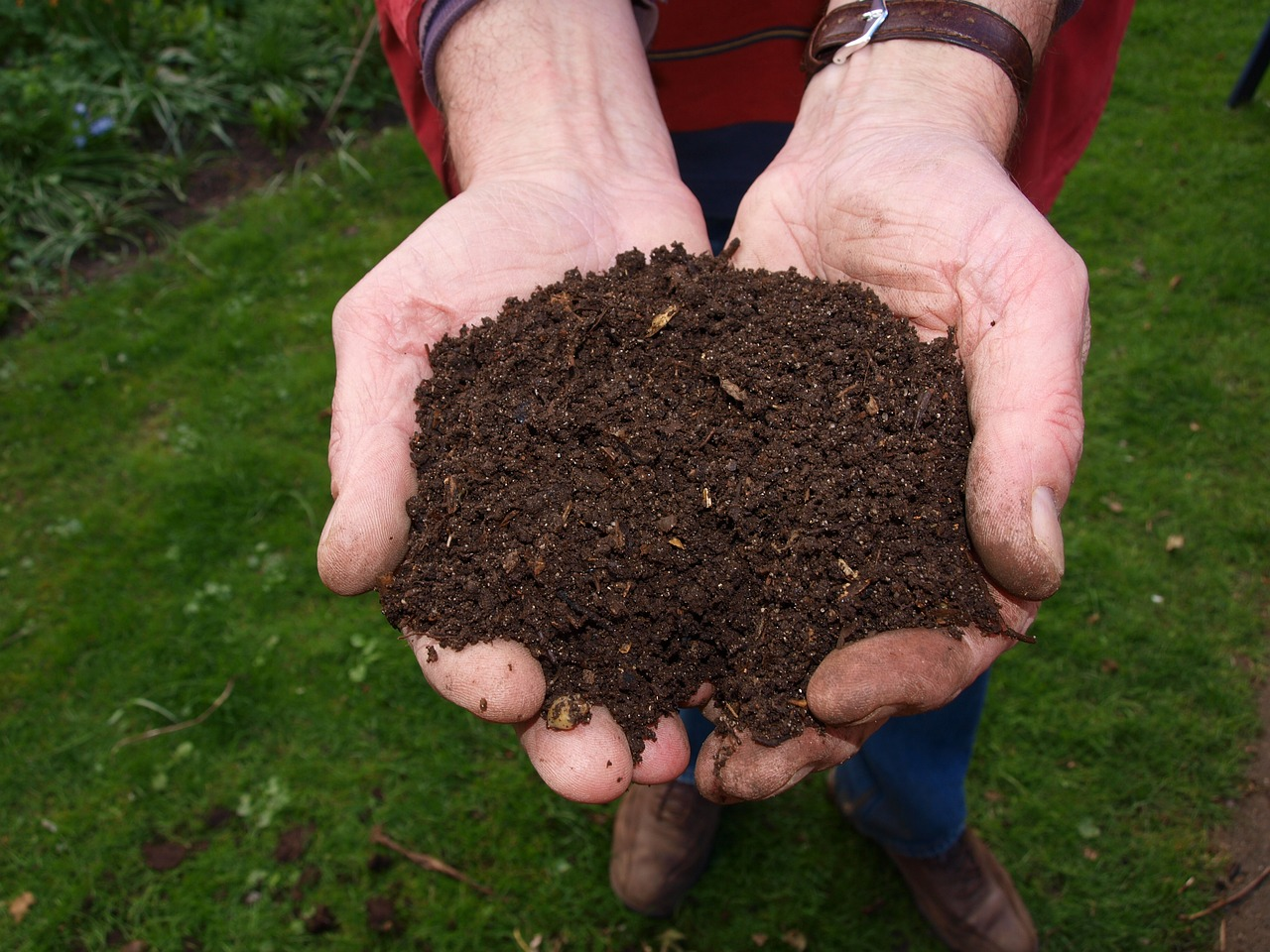 How To Make Your Own Compost - Get Your Garden To Thrive